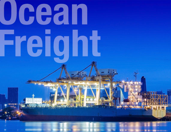 Key Logistics specialists in Ocean Freight